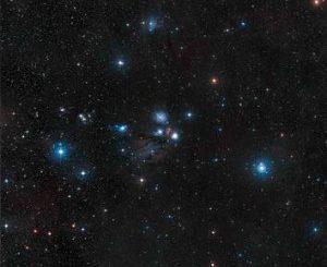 stelle-300×292