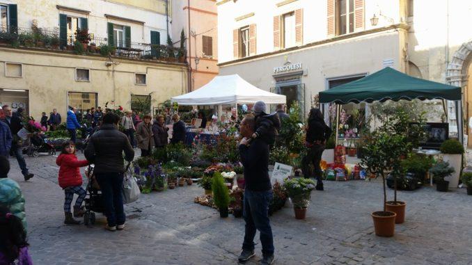 Fiori Jesi.Jesi In Fiore Al Via Una Trentina Gli Espositori Da Tutta Italia