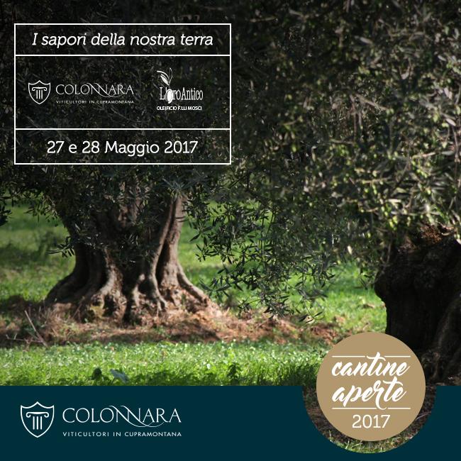 05-2017-cantine-aperte-partner-3