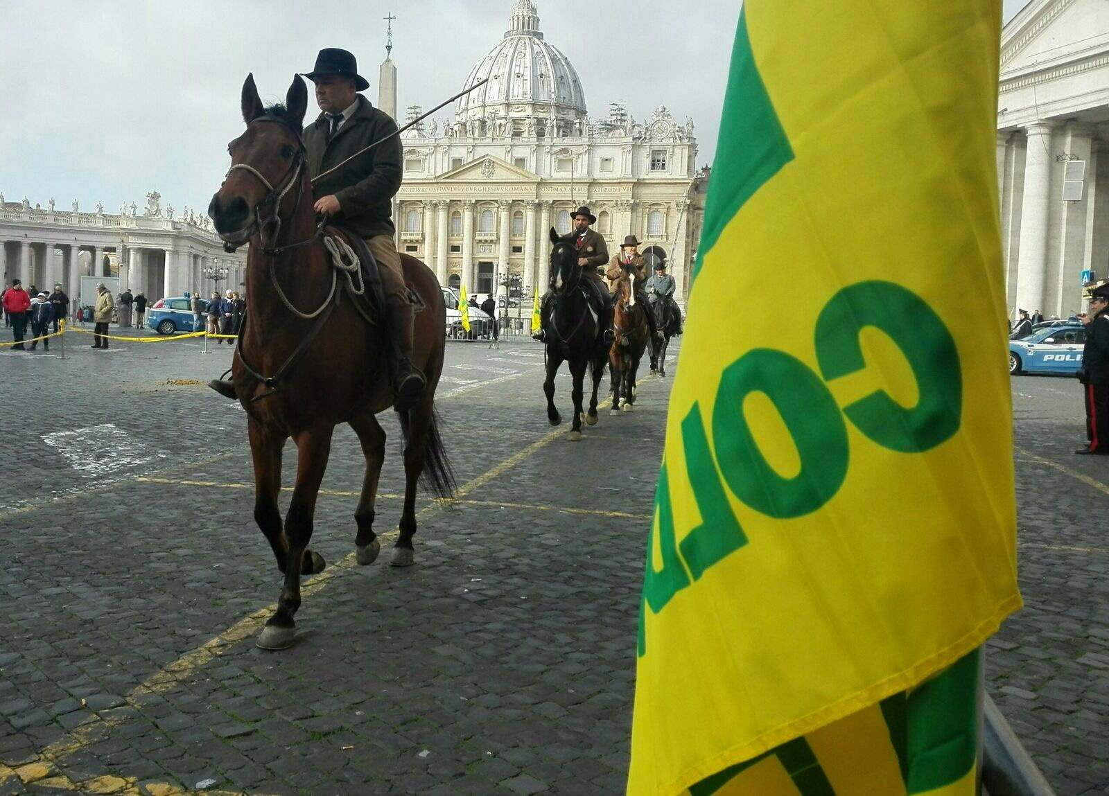 cavalli in piazza san pietro