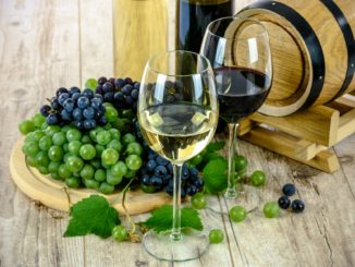 vino cantine