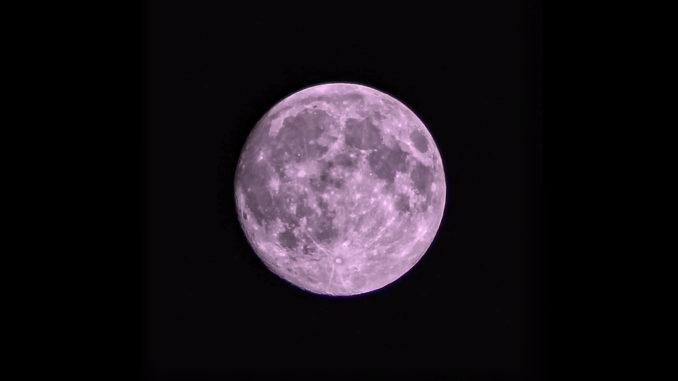 Luna_rosa