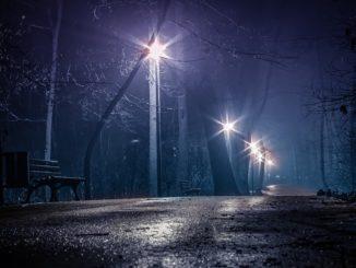 dark-park-3461023_960_720