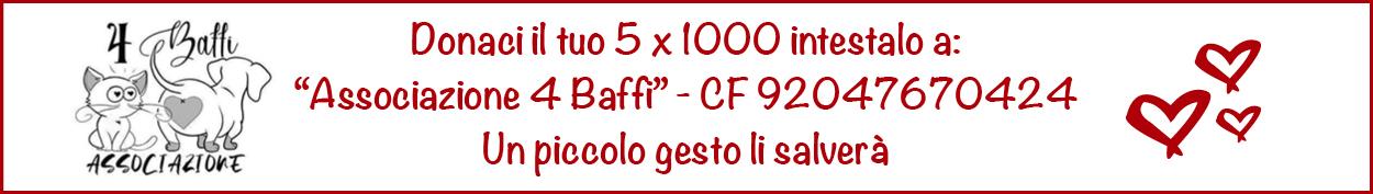 Banner4Baffi
