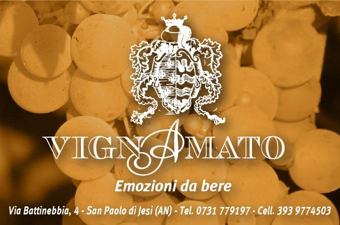 Banner Vignamato