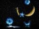 Notte per me luminosa_Aloisa Aisemberg