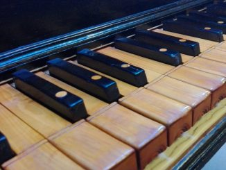 festival organistico marca anconetana